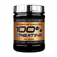 100% Creatine Monohydrate, 300 g